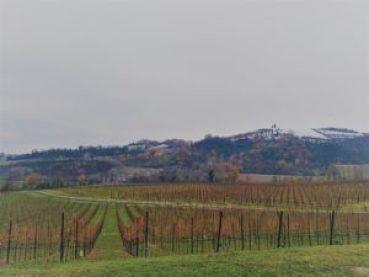 Panorama di Tenuta la Riva