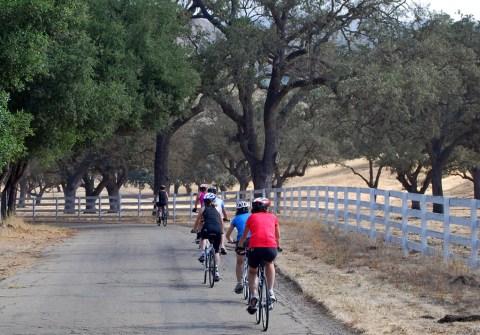 Foxen Canyon Road