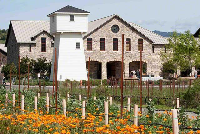 cabernet sauvignon wine country