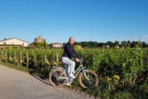 Bike tour in the vineyards
