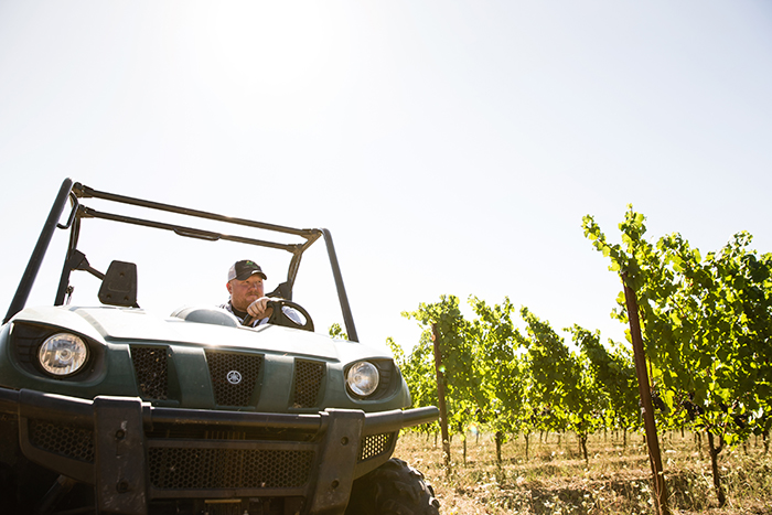 Dustin Dusschee, exploring the vineyard / Photo by Chris Low