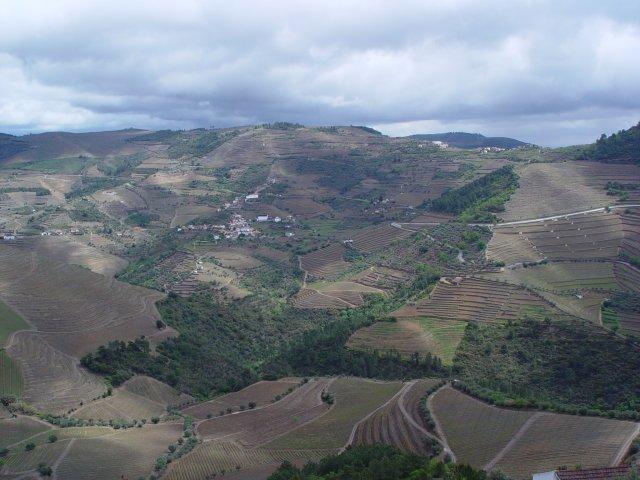 cavadinha view