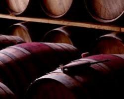 Wine Pleasures visits Luis Canas, La Rioja