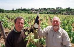 Breliere vineyard_high res