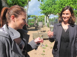 Wine Pleasures visits 50 Great Cava producer Bohigas