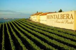 Montalbera 50 Great Sparkling wines