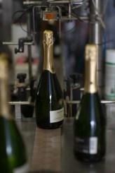 Bohigas winery
