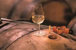 IWINETC La Champagne