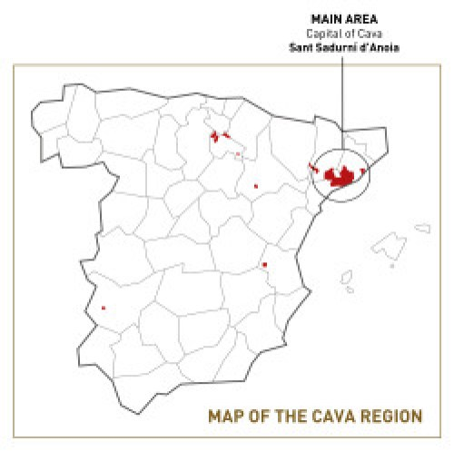 Where is Cava made?