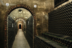 Caves São João 50 Great Sparkling Wines of the World 2016 by Wine Pleasures