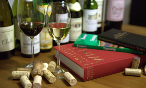 WINE+ wine blog and books