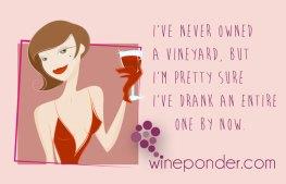 Drink A Vineyard