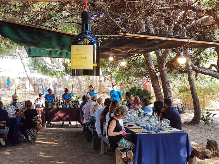 mandrarossa vineyard tour 2018 went menfi