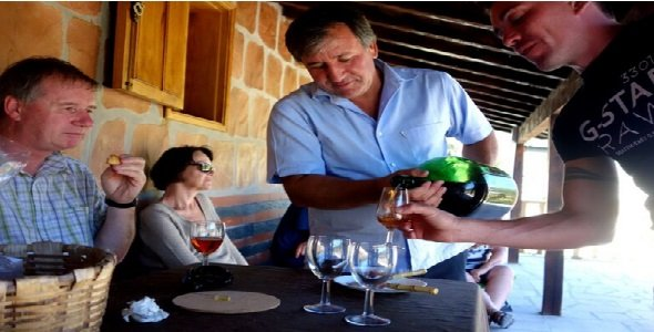 So many Douro Valley Wine Tours