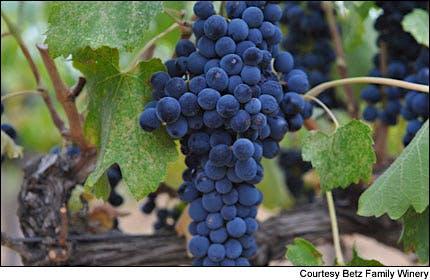 Courtesy of Betz Family Winery