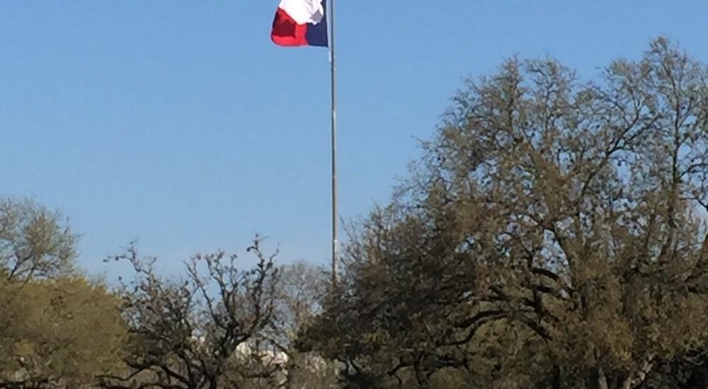 Texas State Cemetery - flag