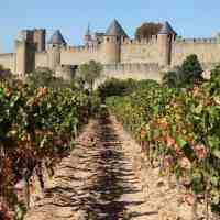 Carcassone & Limoux Itinerary – A History Lover's Wine Adventure