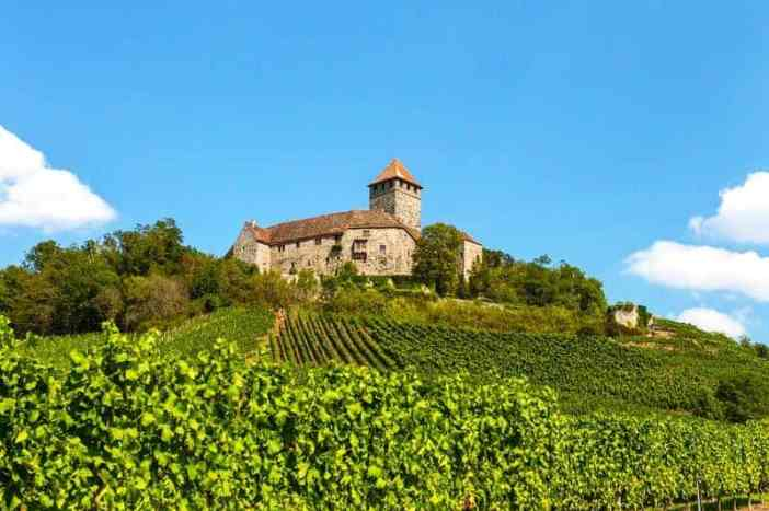 oldest wine companies