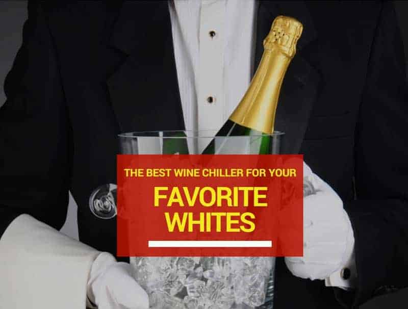 The Best Wine Chiller For Your Favorite Whites