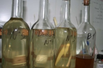 muestras de vino recien fermentado