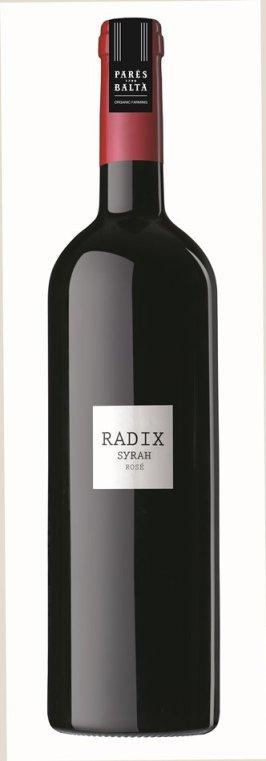 RADIX - Parés Baltà - copia