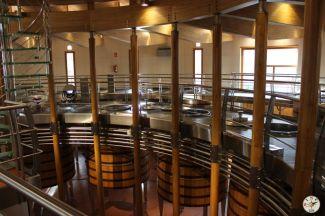 Wine Up en Vega Sicilia IMG_2934