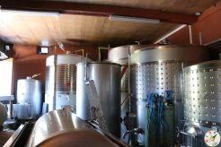 wine up IMG_2821