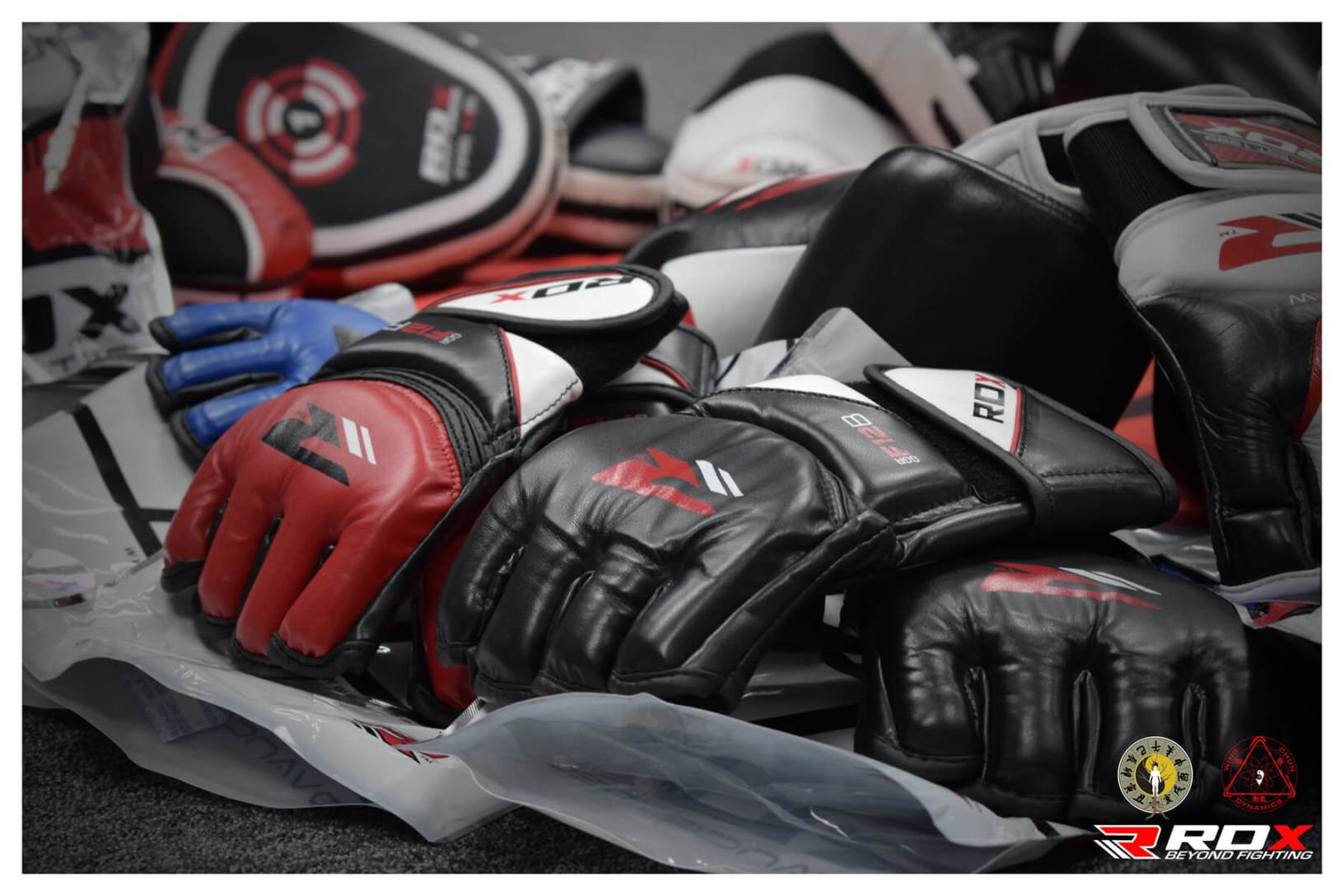 RDX sports partners with wing chun dynamics martial arts