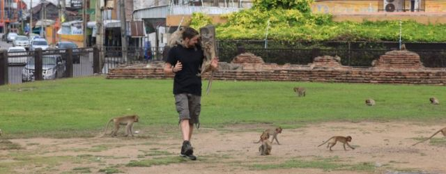 Tim enjoying the mischievous Lopburi monkeys
