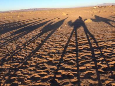 The shadow of the camels trekking through the desert.