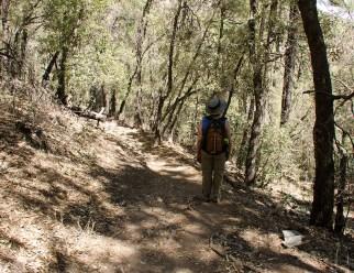 Ramsey Canyon Scenic Views3