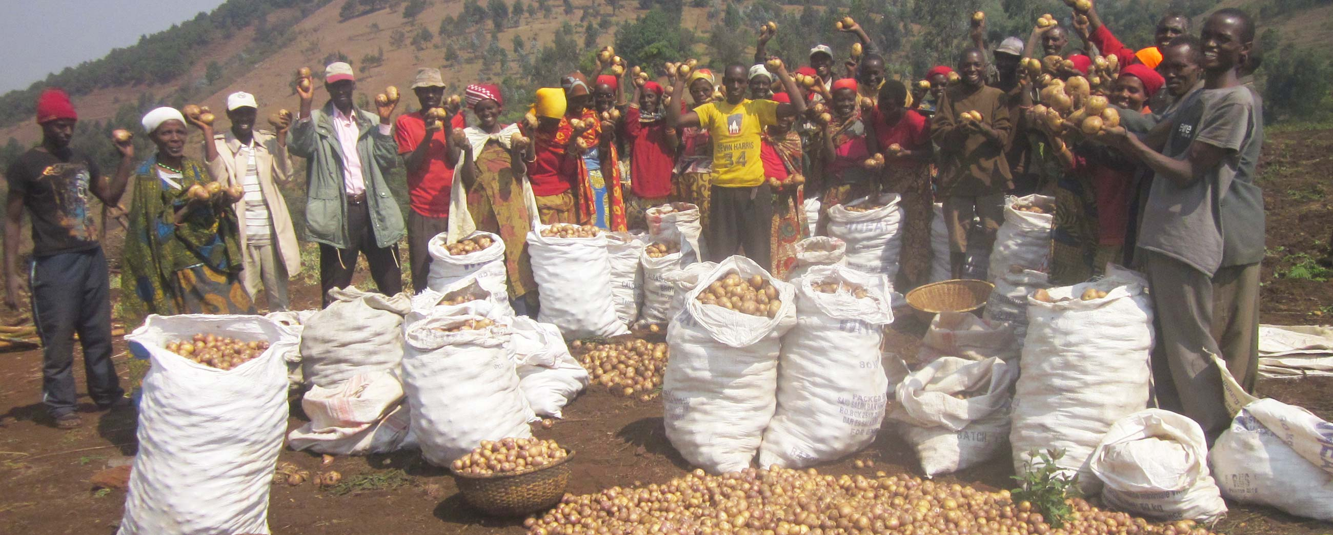 Agriculture in Burundi - Wings of Hope for Africa Foundation.