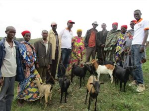 A group of people stand with several goats