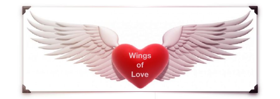 Wings of Love, Inc. Nonprofit Corporation 1996-2016