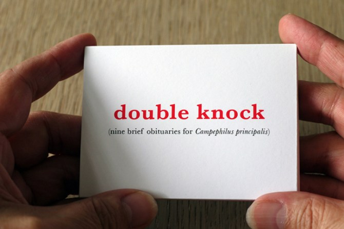 double knock bookwork #1 for website