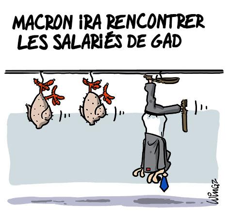 ministre économie gad abattoirs