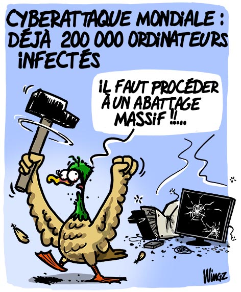virus informatique abattage massif canards grippe aviaire