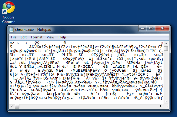 .exe files open in notepad or any other application