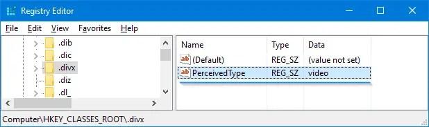divx and flv perceivedtype video