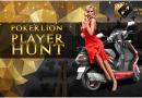 Poker Lion Player Hunt