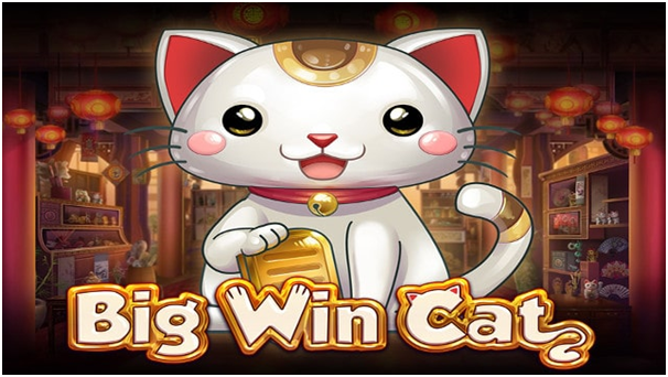 Big Win Cat Slot Game