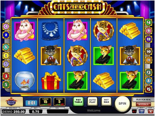 Cats n Cash