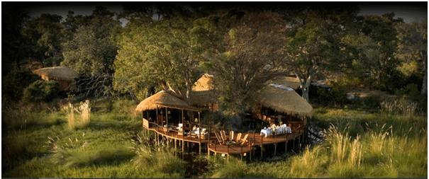 Botswana Safari for perfect Valentine Day
