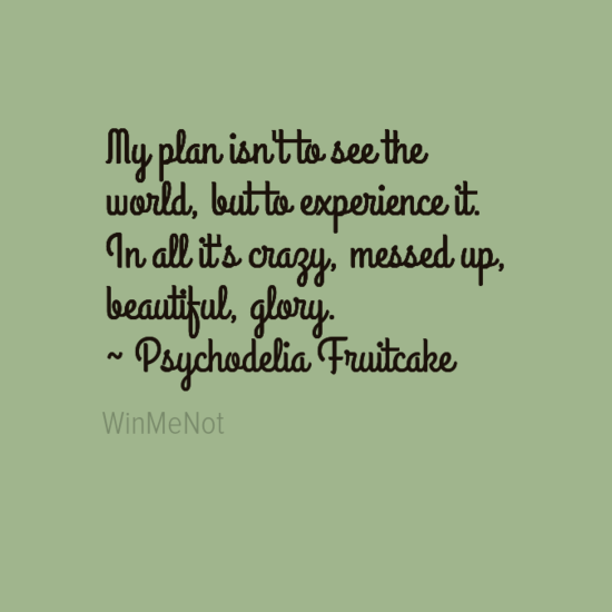 My plan isn't to see the world, but to experience it. In all it's crazy, messed up, beautiful, glory. ~ Psychodelia Fruitcake