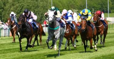 types of horse racing flat racing