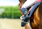 max racing tips review