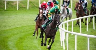 Betting gods horse racing guru cars mairie betting 5780081
