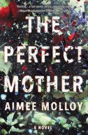 fiction-the-perfect-mother