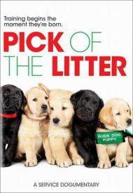 movies-pick-of-the-litter