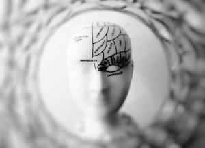 Brain photo black and white